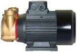 PC25EM2T50V400 BRONZE TURBINE MOTOR PUMP UNIT 3/50/415V